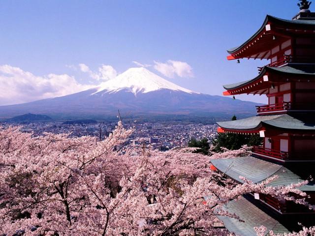 Yumiko's Top 10 Tokyo Highlights